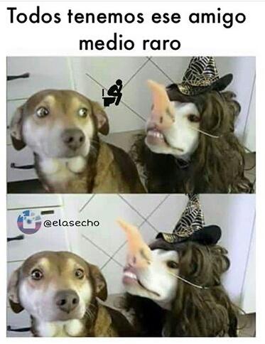 See - meme