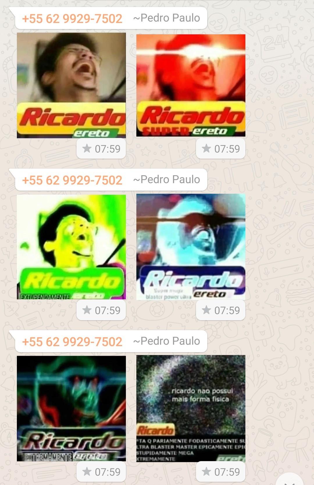 Ricardo eretrificações - meme