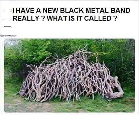 Ha! Metal jokes - meme