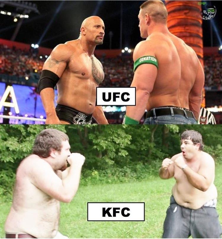 fat vs fit - meme