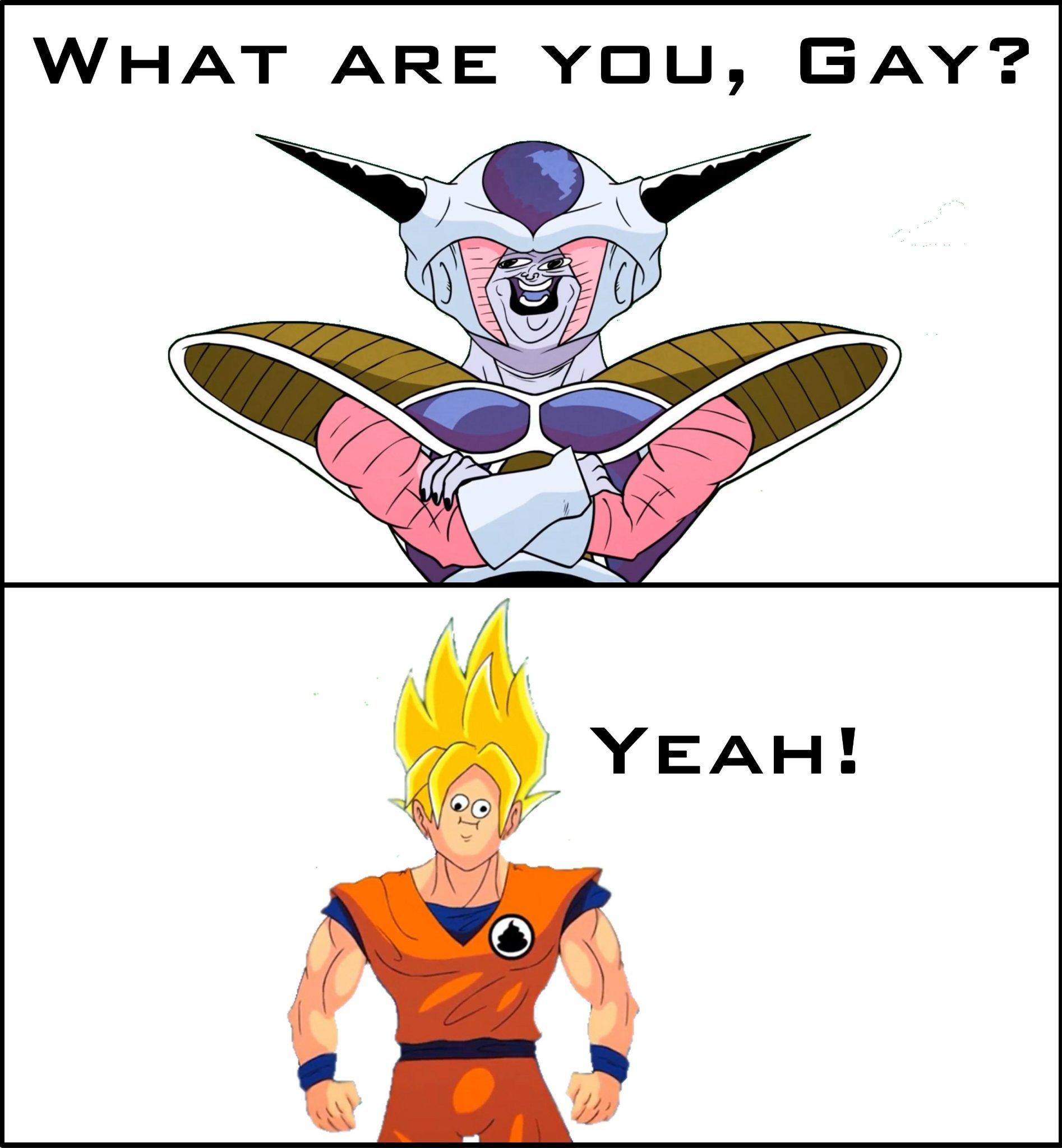 R U Gay? - meme
