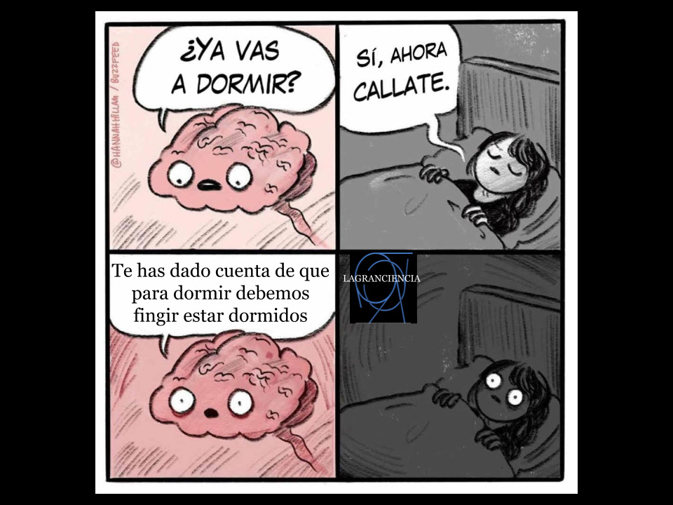 Durmiendo - meme