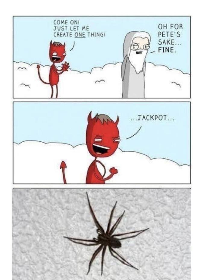 SPIDER!!!!!!!!!!!!!!!!!!!!!!!!!!!!!!!!!!!!!!! - meme