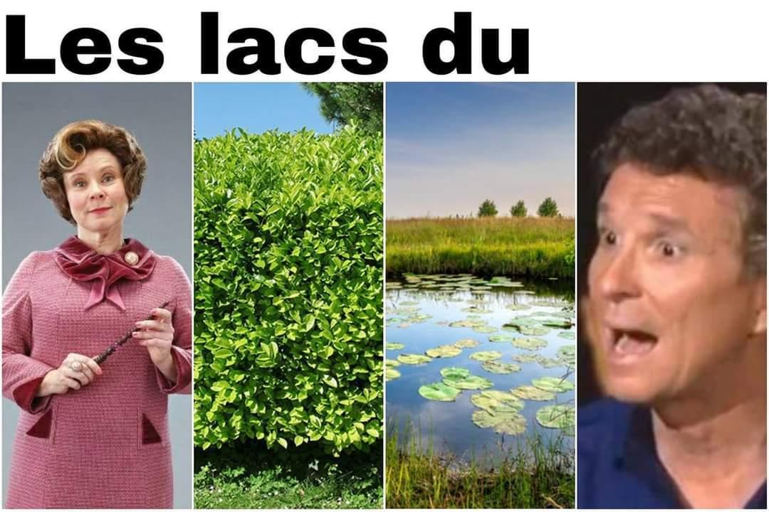 Les Lacs du - meme