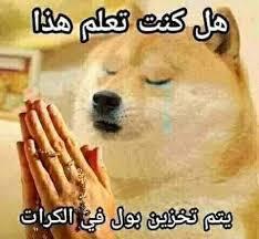 OMG chemms rezando en arabe - meme