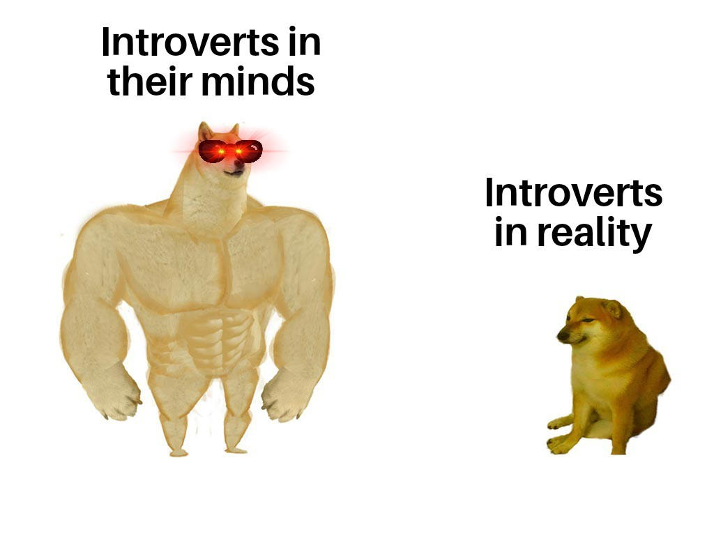 Introverts - meme
