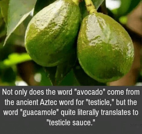 The more you know - meme