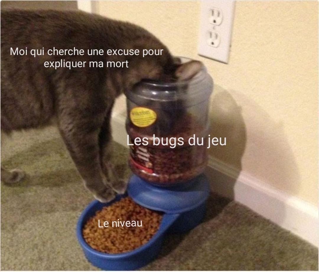 1er meme