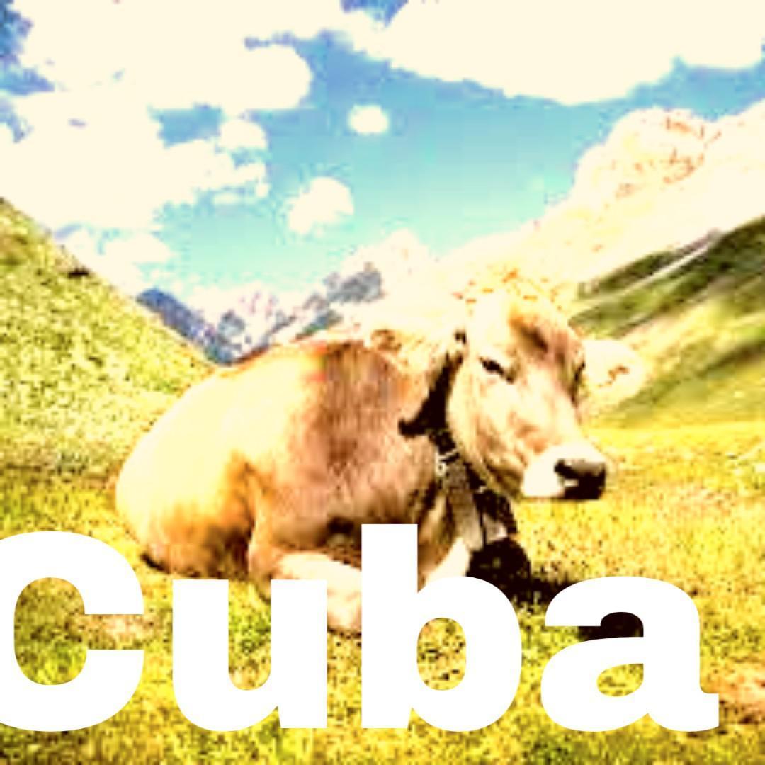 Cuba - meme