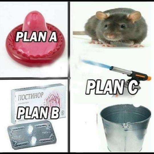 Plano C de Rato - meme