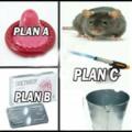 Plano C de Rato