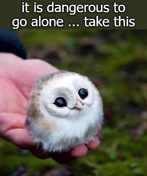 It is dangerous to go alone, take this! - meme