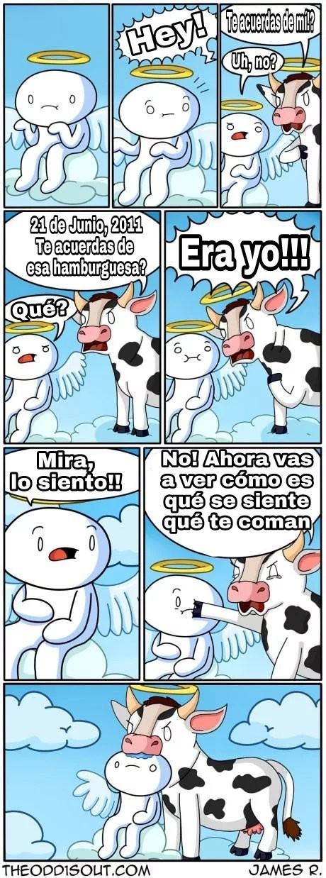 Recién pasado al español - meme