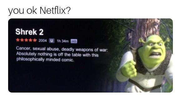 You OK Netflix? - meme