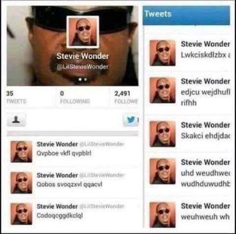 Stevie Wonders twitter - meme
