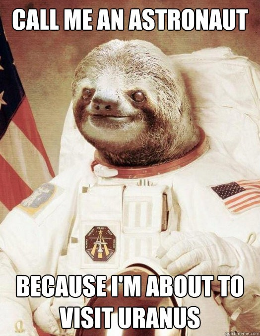 Space sloth - meme