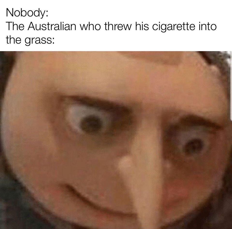 Smoking kills - meme