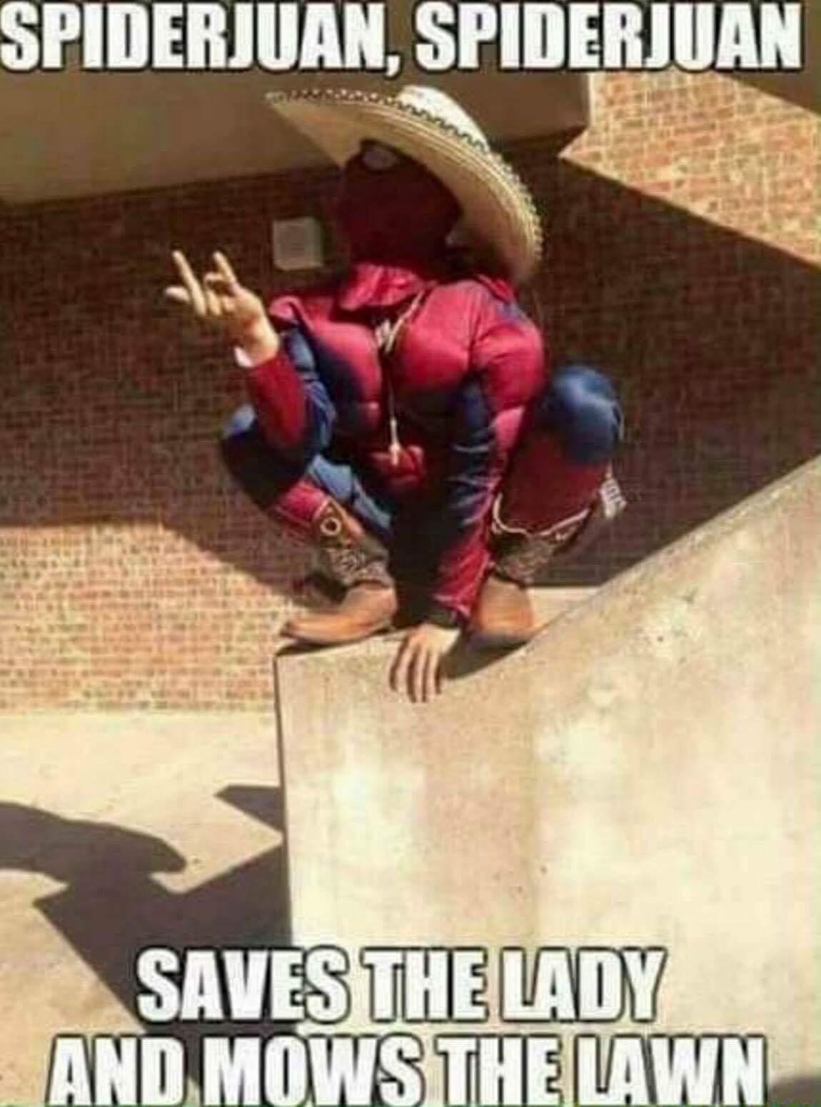 Spiderjuan - meme