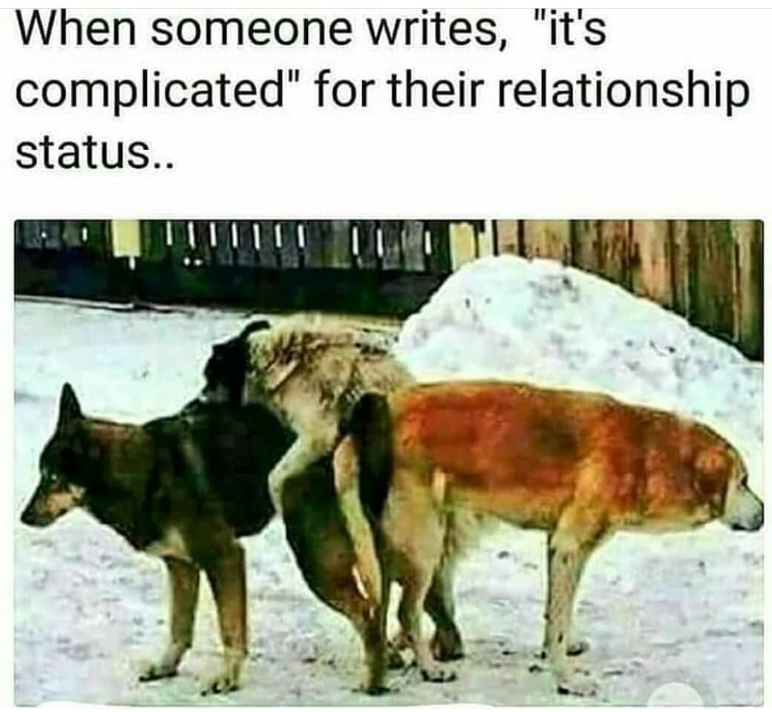 It's complicated - meme