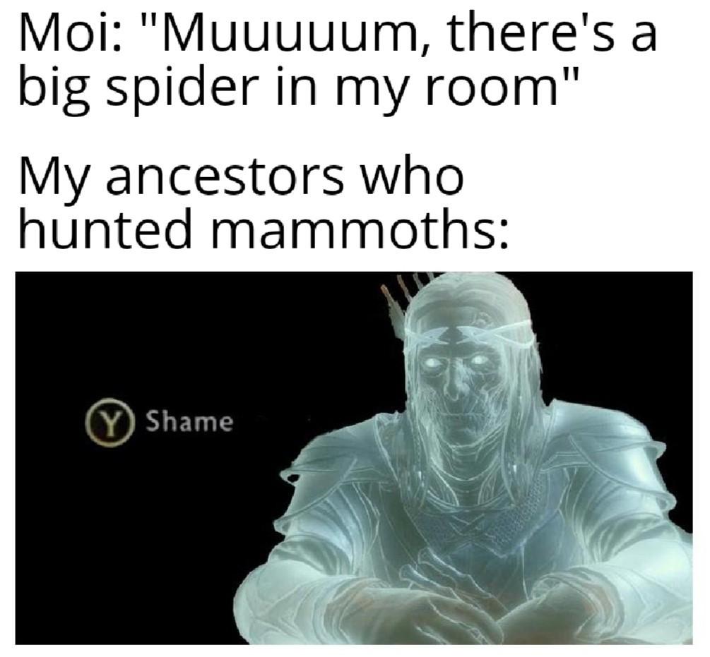 *Moi:Mamaaaaan, il y a une grosse araignée dans ma chambre*. *Mes ancêtres qui ont chassé le mammouth* - meme