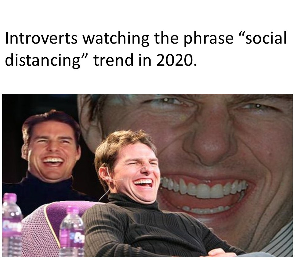 2020 is a Dream Come True For Some People...... - meme
