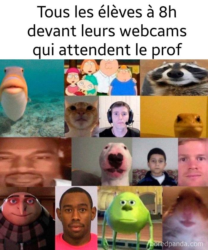 Ahhh les cours en visio - meme