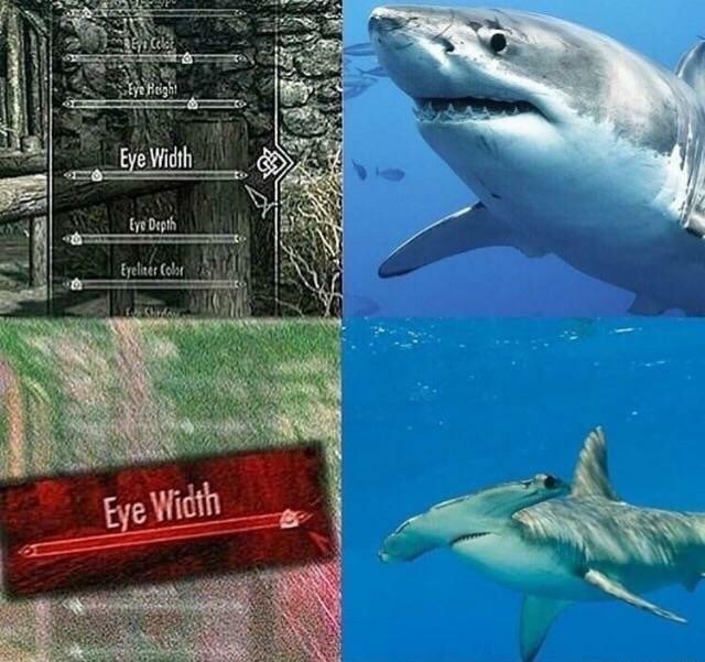 water boi - meme