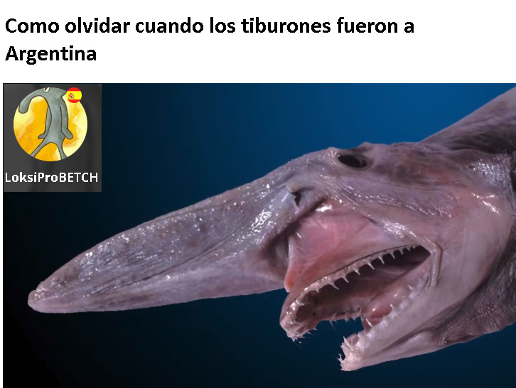 Tiburones Argentinos XD - meme