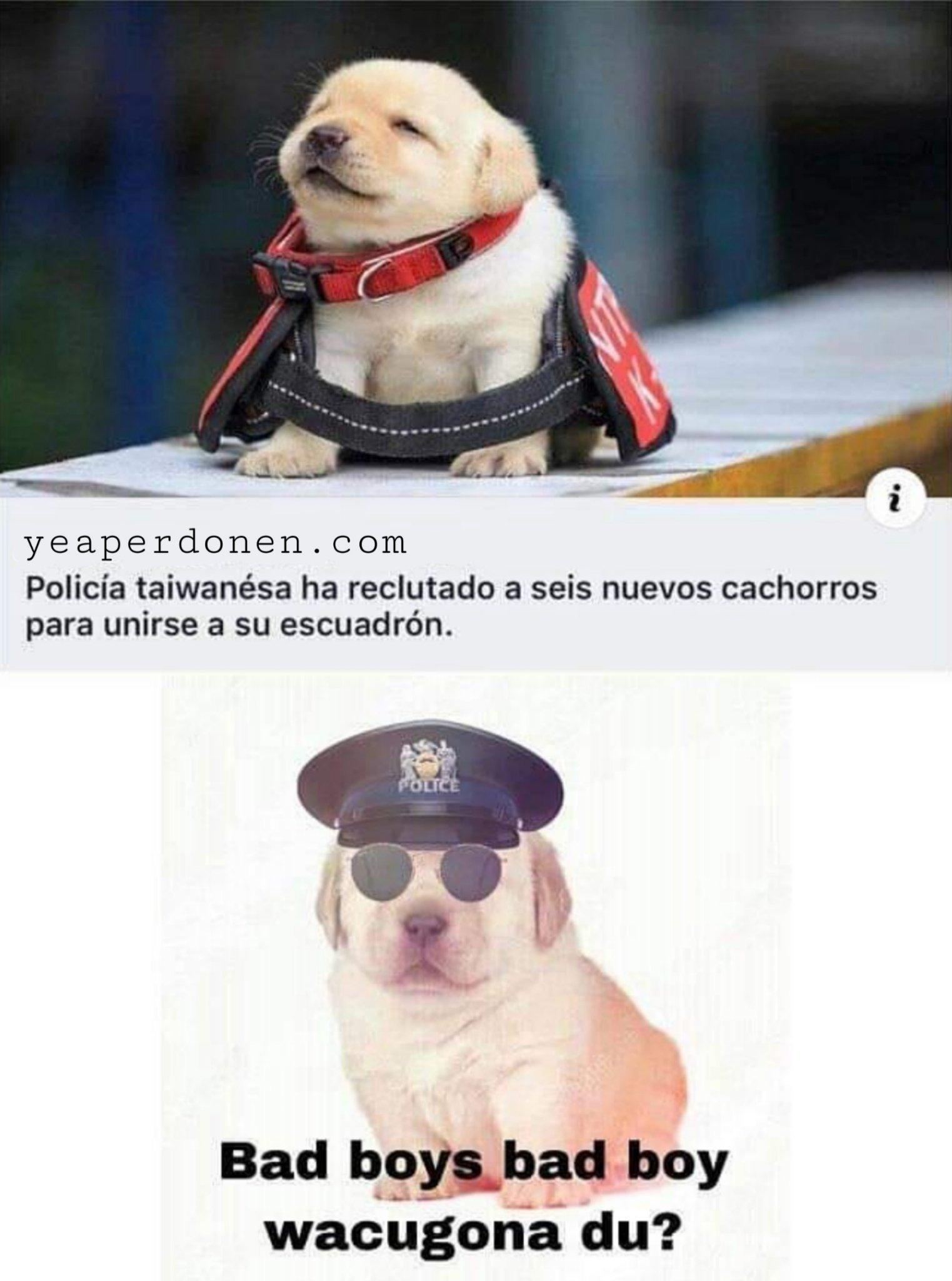 Yeaperdonen - meme
