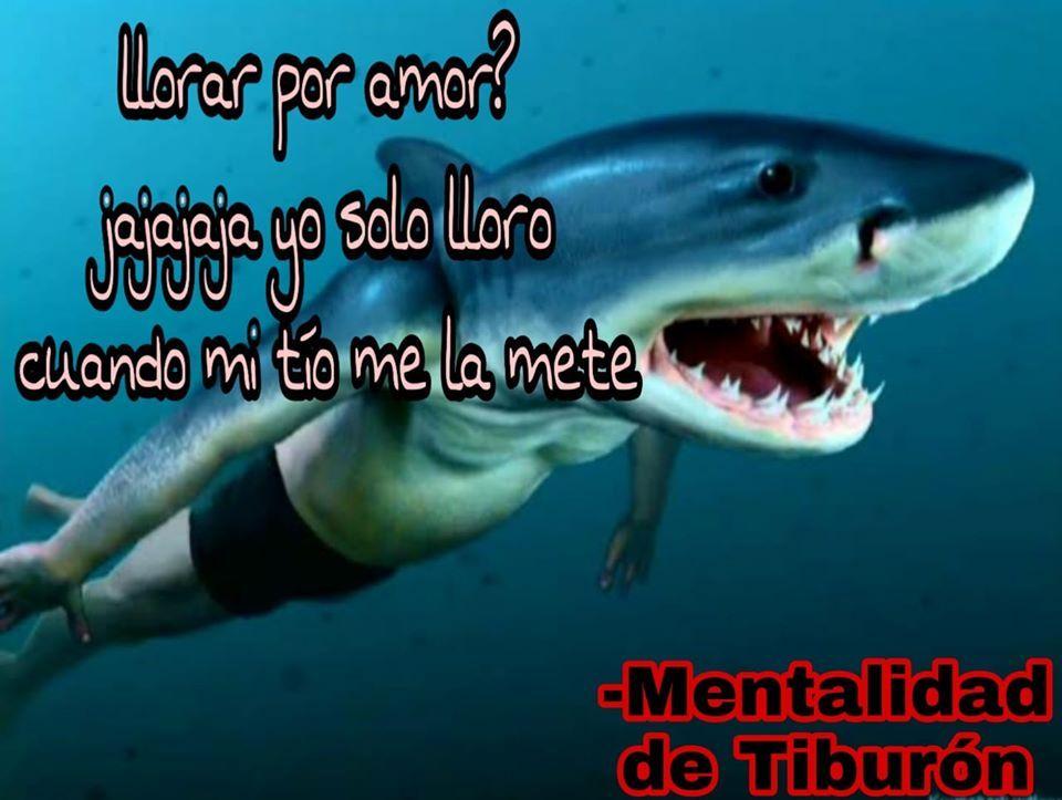MentalidadDeTiburonPapulince# - meme