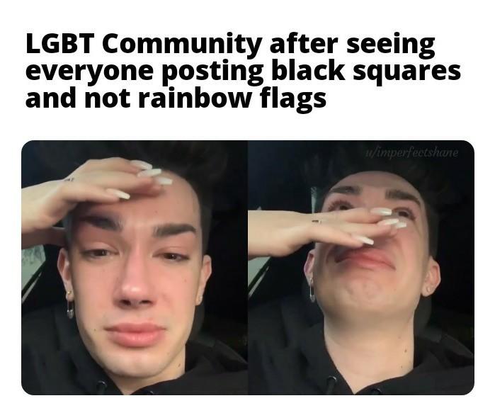 *cries in gay* - meme