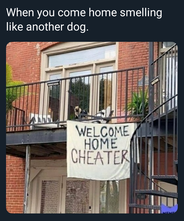 Welcome home cheater - meme