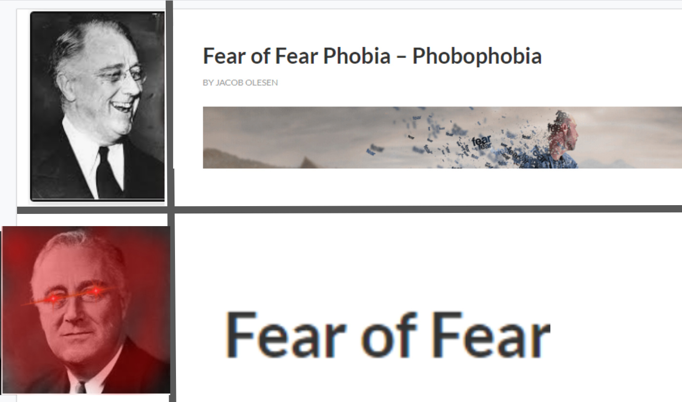 The only thing we have to fear is fear itself - meme
