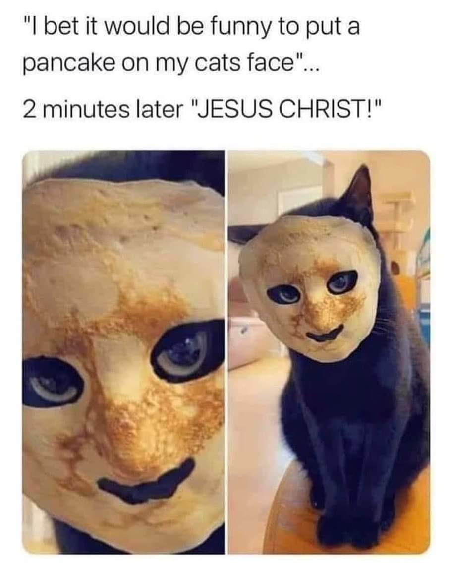 Pancake cat demon - meme