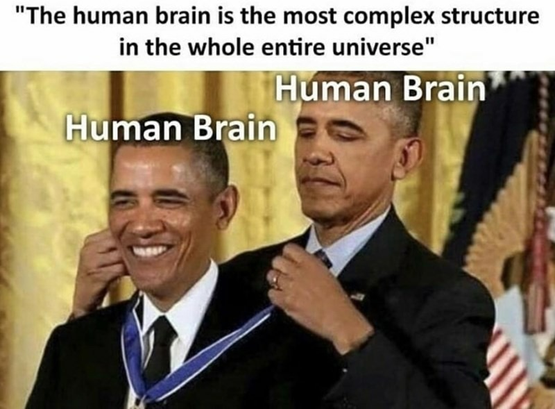 Le brain - meme