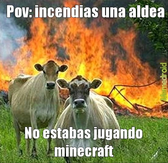 Aldea - meme
