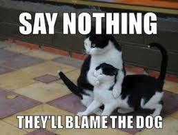 Say nothing! - meme