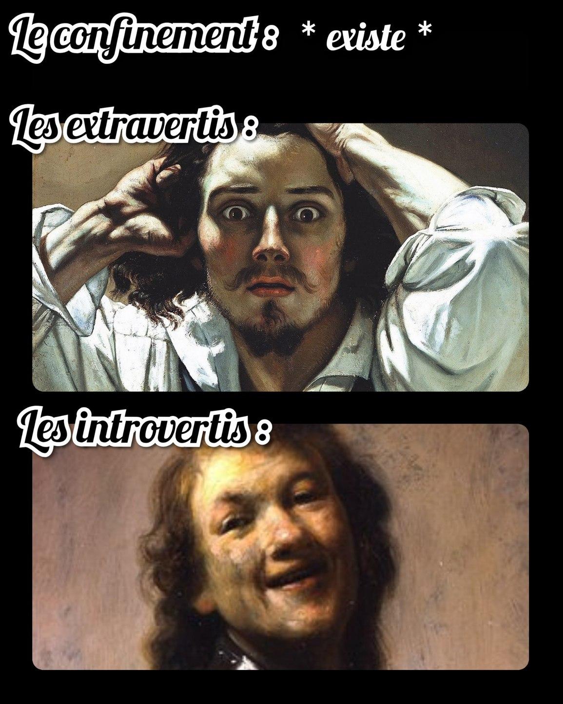 Bien heureux les introvertis - meme
