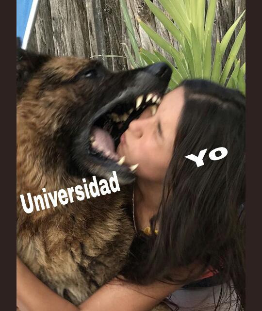 Dou :( - meme