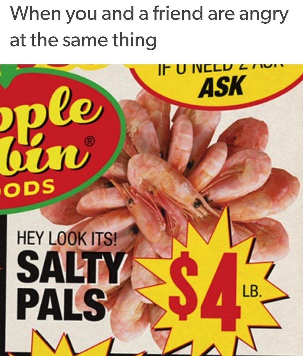 Salty pals - meme