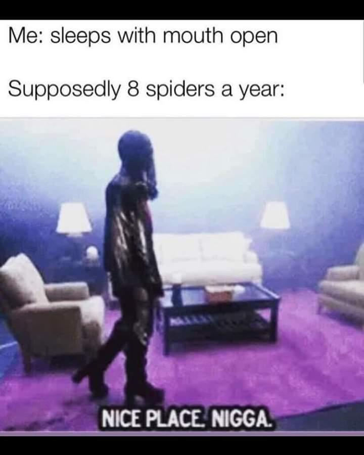 Fuck yo couch - meme