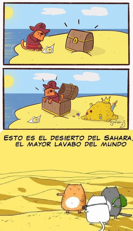 GATO ARENA MARRÓN - meme