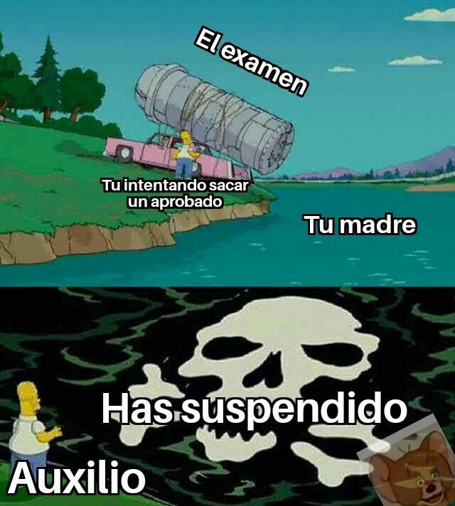 Acptn pls - meme