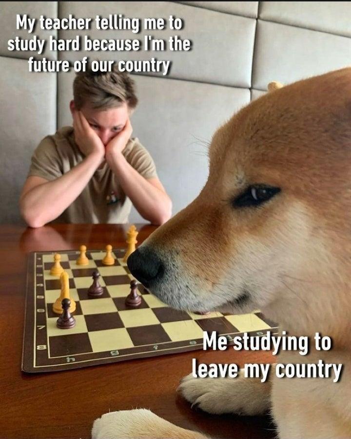 checkmate - meme