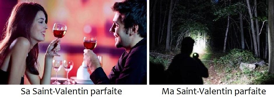 Ma Saint-Valentin parfaite - meme