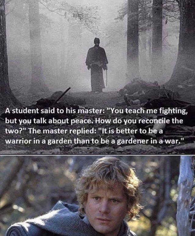 Hero Gardener - meme