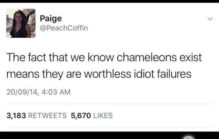 Chameleons - meme
