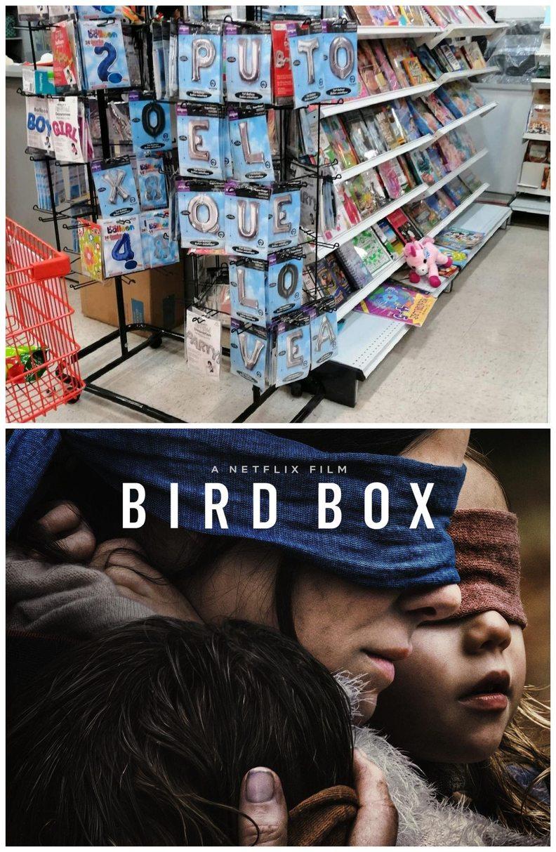 Birdbox - meme