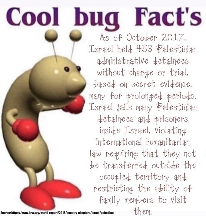 Haha it funny cuz u wouldn't expect cool but to talk about Palestine - meme