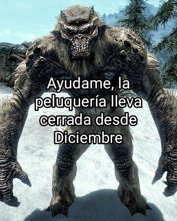 Skyrim Wuik - meme